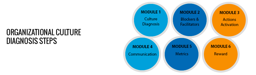 Organizational Culture Diagnosis Steps